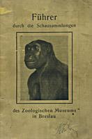 Przewodnik po Muzeum z 1925 r